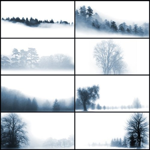 Brushes de neblina