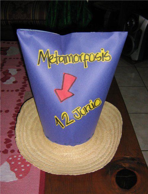 Sombreros de vaqueros 08