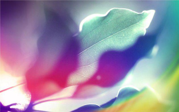 diseño arco iris