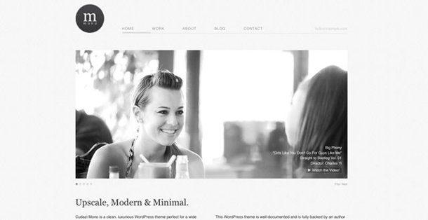 Temas de WordPress con diseño premium