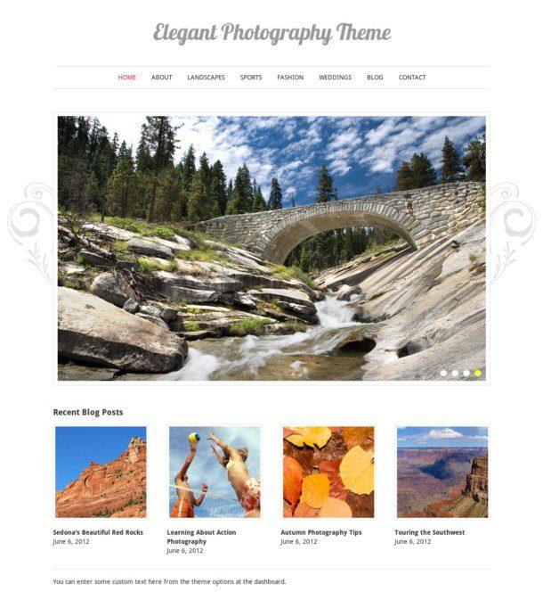 elegant photography theme