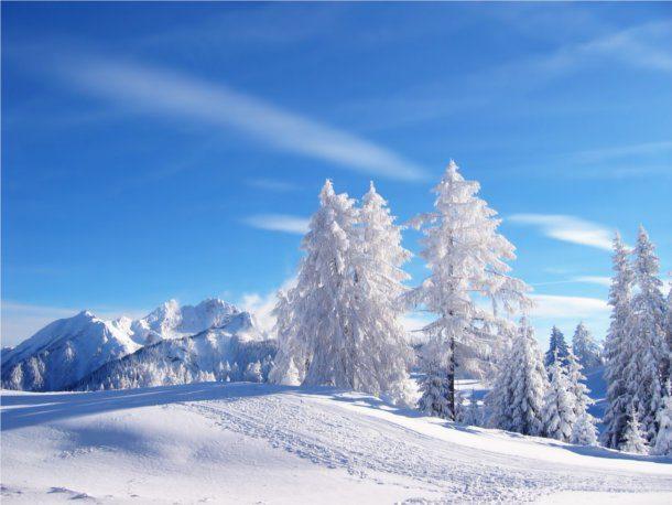 Prado en invierno