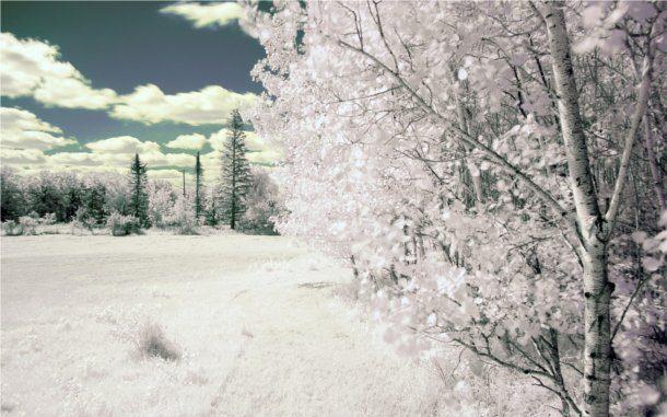 Paisajes en invierno