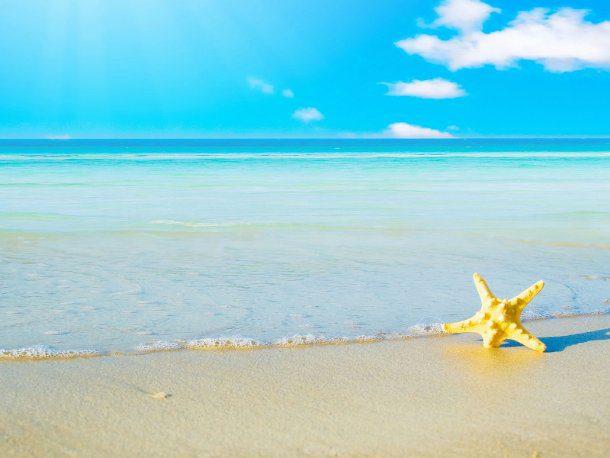 Playa y estrella de mar