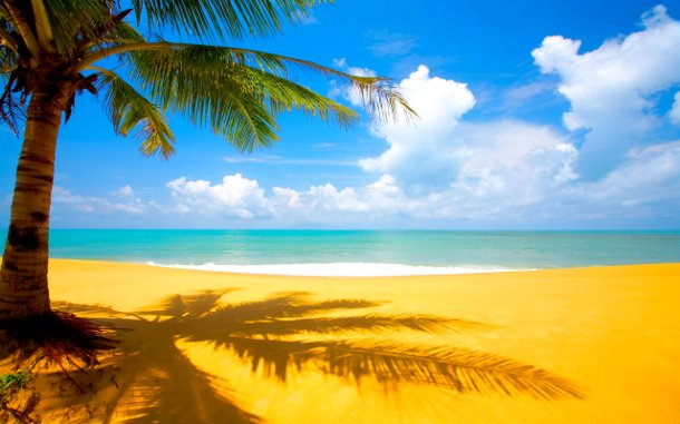 playa de arena dorada