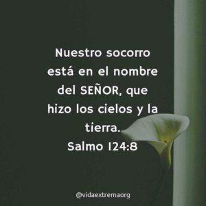 Salmo 124:8