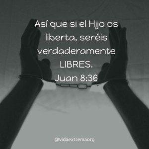 Juan 8:36