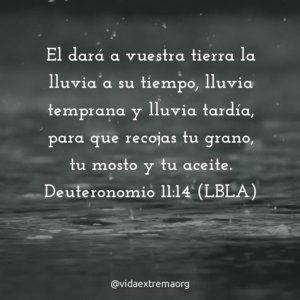 Deuteronomio 11:14