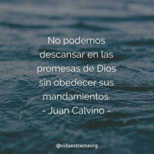 Frase de Juan Calvino y las promesas de Dios
